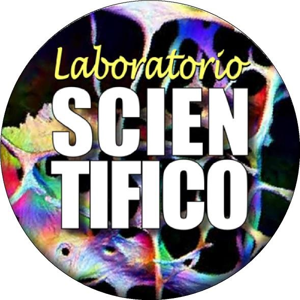 Laboratorio scientifico: Scuola Secondaria